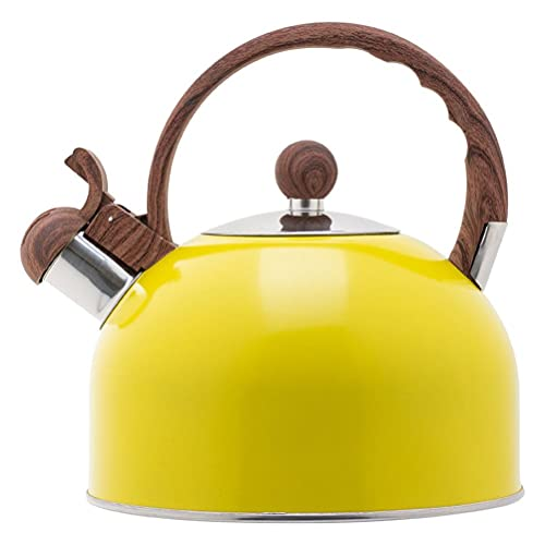 Auplew Hervidor de agua de 2,5 L de acero inoxidable para cocina, hervidor de agua, para viajes, para cocina de gas, exterior, picnic, senderismo