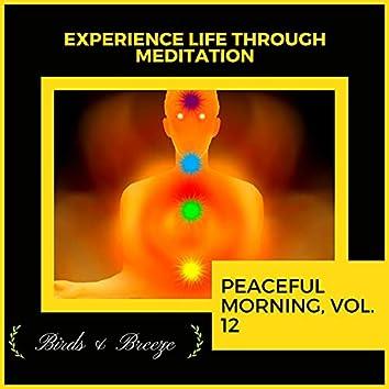 Experience Life Through Meditation - Peaceful Morning, Vol. 12