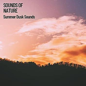 Sounds of Nature: Summer Dusk Sounds
