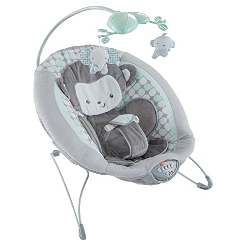 Fantastic Deal! Fisher-Price Sweet Surroundings Monkey Deluxe Bouncer