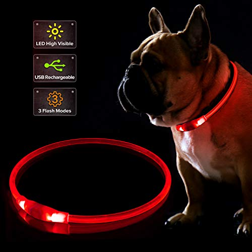 LED Dog Collar, USB Rechargeable Flashing Light Up Collar for Safety at Night, Adjustable Water Resistant Bright Lighted Collar for Small Medium Large Dogs (Royal Red)
