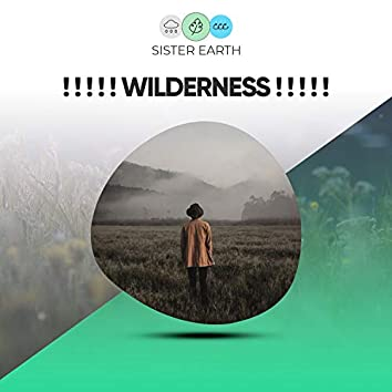 ! ! ! ! ! Wilderness ! ! ! ! !