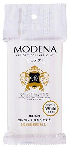 パジコ 樹脂粘土 モデナ 250g ホワイト 303109