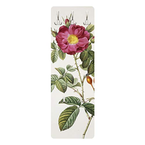 Bilderwelten Perchero - Pierre Joseph Redoute - Portland Rose 139cm x 46cm