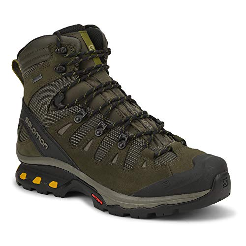 Salomon Men's QUEST 4D 3 GTX Backpacking, Wren/Bungee Cord/Green Sulphur, 12