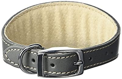 BBD Pet Products Whippet Collar, One Size, 3/4 x 10 to 12-Inch, Grey