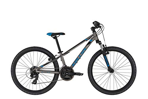 Kellys Kiter 50 24R Kinder & Jugend Mountain Bike 2020 (28cm, Titanium Blue)