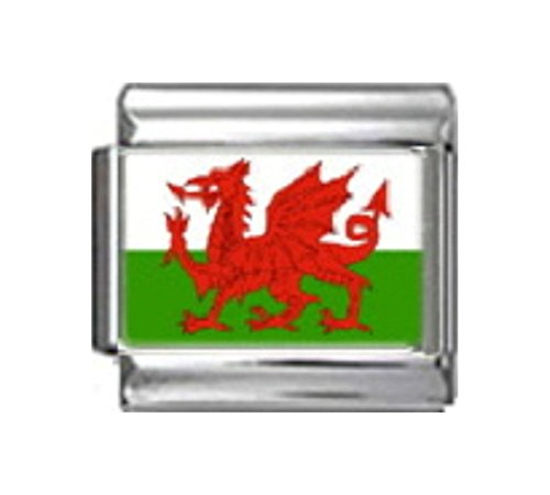 Stylysh Charms Wales Welsh Flag Photo Italian 9mm Charm PC195 Fits Nomination Classic