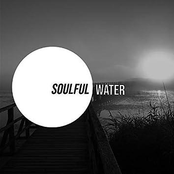 # 1 Album: Soulful Water
