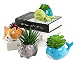 Succulent Planters - Cute Animal Succulent Pots with Drainage (Set of 4) - Dog Cat Whale Turtle - Small Planter Pot for Indoor Outdoor Decoration, Garden Decor, Indoor Planter, Garden Gifts