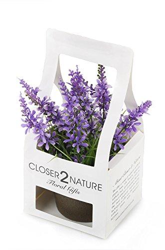 Closer 2 Nature Artificial Flower, Künstliche Mini Glockenblumen Pflanze in Geschenk Box, 18 cm, violett/lila