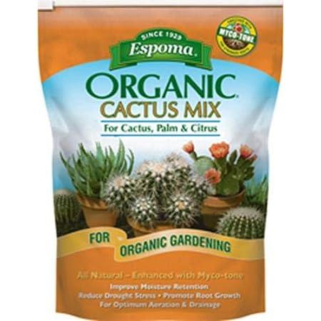 MEDIUM mosaic cactus free standing