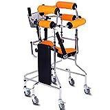 Walker permanent stand équipement auxiliaire/aides à la verticalisation...