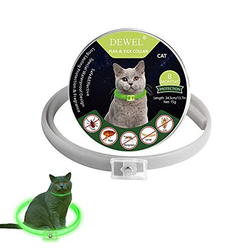 Collares Antipulgas Fluorescentes Ajustables DEWEL 8 Meses de Protección Stop Bichos y Picazón, Resistente al Aqua para Perros medianos y Gatos pequeños