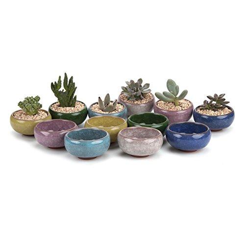 T4U 6.5CM Keramik Sukkulenten Töpfe Kaktus Pflanze Töpfe Mini Blumentöpfe EIS Crack Zisha Serie 6 Fraben 12 Stücke Set