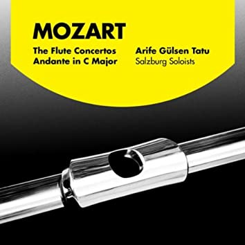 Mozart: The Flute Concertos and Andante in C Major