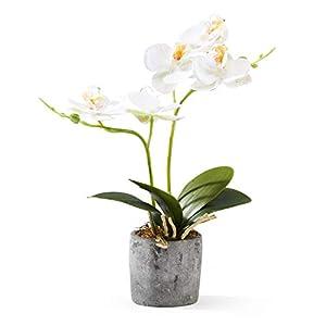 Alicemall Flores artificiales de seda – Arreglo floral de seda Decoración Jardín Blanco