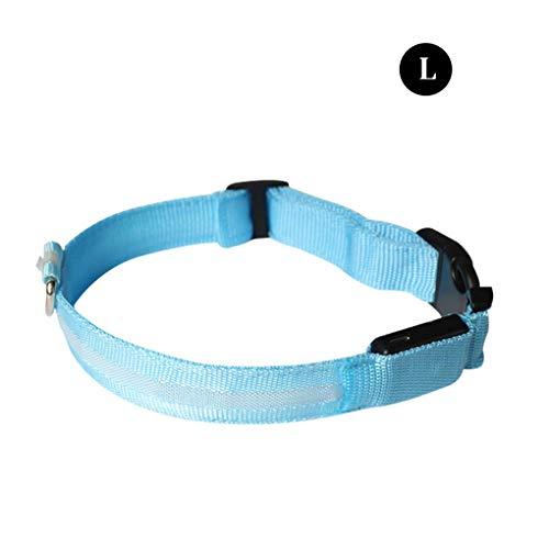 Jinghengrong USB Recargable Collar Luminoso del Animal doméstico del Collar del Cuello brillaba intensamente LED luz Intermitente con Correas, Azul, L