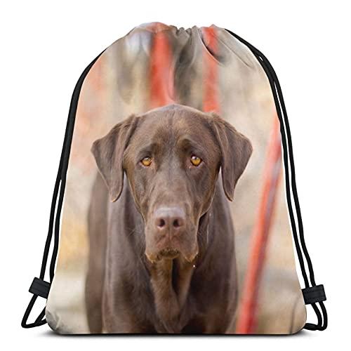 Mochila unisex con cordón, diseño de perro y amiga, bolsa de cincha de poliéster, impermeable, para deporte, gimnasio, mochila informal para mujer
