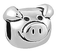 EVESCITY(TM) 人気のチャームビーズ チャームブレスレット&ネックレス用