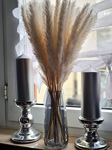 PIPIHUA Vase aus Bleifreiem Glas,Kristall Vasen für Pampasgras,Ins Style Handgemacht Blumenvase für Blumen und Trockenblumen,Deko Geschenk für Wohnzimmer/Büro/Esstisch, (Rauchgrau)