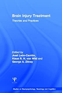 Brain Injury Treatment: Theories and Practices