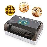 Incubadora Automática de 12 Huevos con Pantalla Digital con iluminación LED y Control Eficiente e Inteligente de Temperatura