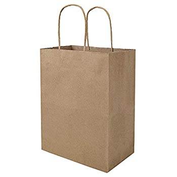 100 Pack 8x4.75x10 inch Plain Medium Paper Bags with Handles Bulk Bagmad Brown Kraft Bags Craft Gift Bags Grocery Shopping Retail Bags Birthday Party Favors Wedding Bags Sacks  Natural 100Pcs