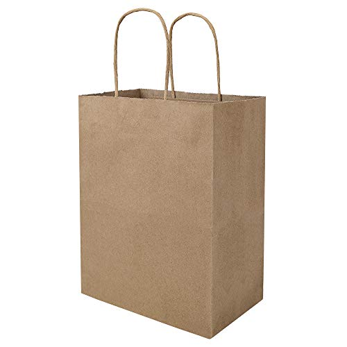100 Pack 8x4.75x10 inch Plain Medium Paper Bags with Handles Bulk, Bagmad Brown Kraft Bags, Craft Gift Bags, Grocery Shopping Retail Bags, Birthday Party Favors Wedding Bags Sacks (Natural 100Pcs)
