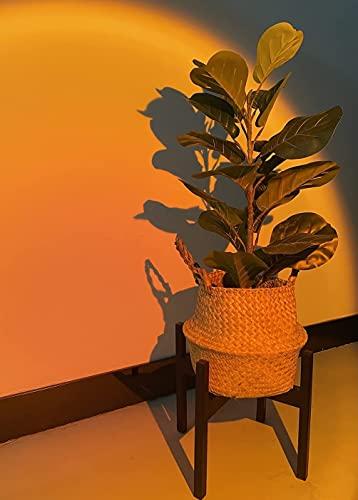 AWNIC Soporte de Plantas Expandible de Metal Macetero con Patas Soporte para Flores y Plantas de...