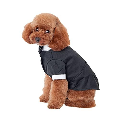 Ropa para Mascotas Traje de Moda Traje de Arco para Perro Príncipe...