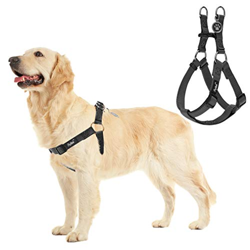 Simple Dog Harness