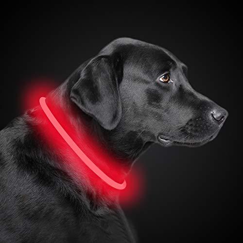 PetIsay LED Leuchthalsband Hund Halsband USB wiederaufladbar, Längenverstellbarer Haustier Sicherheit Kragen für Hunde und Katzen, 3 Modus(Rot)