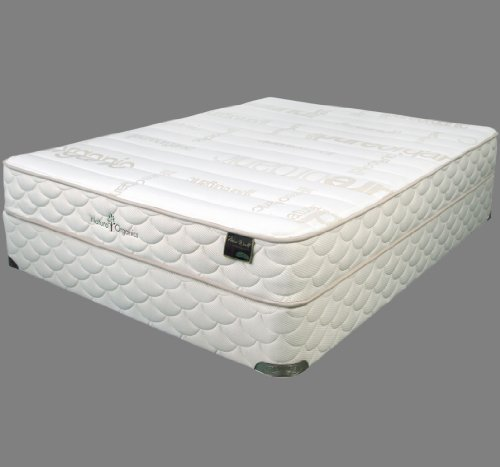Buy Natura EcoSlumber Mattress Set (Queen)