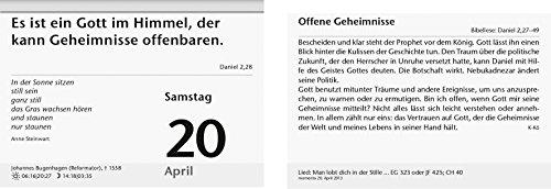BRUNNEN 107030002 Tages-Abreißkalender Konstanzer Kalender momento (1 Seite = 1 Tag, 150 x 110 mm, Kalendarium 2020)