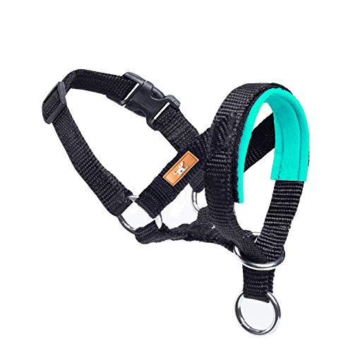 wintchuk Dog Head Collar with Soft Fabric, Head Harness Stops Dog Pulling, Head Leash for Small Medium Large Dogs Walking (S, Green)