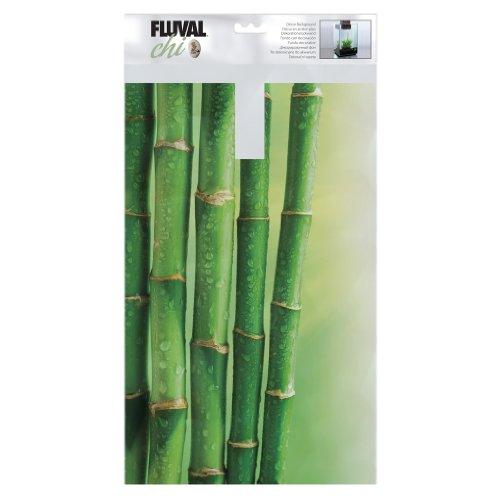 Fluval Chi Hintergrund aus Bambus
