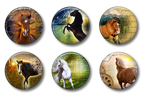 Cute Locker Magnets For Teens - Horse Magnets - School Supplies - Whiteboard Office or Fridge - Funny Magnet Gift Set (Horses)