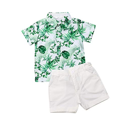 Toddler Baby Boy Flamingo Short Sleeve Button Down Shirt & Casual Shorts Set Summer Outfits 1-6 Years Clothes (Green Leaves, 5-6T)