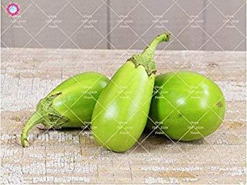 100pcs rond noir Aubergine Graines semences de légumes Heirloom biologique Plantes non-OGM pour le jardin bon goût riche en vitamines 1