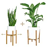 [2 Pack] mini+MOD Mid Century Plant Stands – Get 2 Adjustable Plant Stands-Planter Stands. Bamboo Plant Stands are Reversible for Tall Plants. Modern Plant Stands fits 8'-12' pots [pots NOT incl]