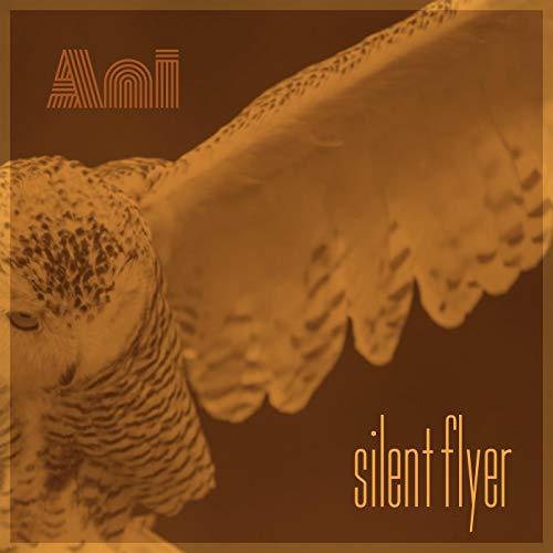 Silent Flyer
