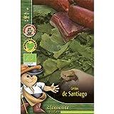 Semillas ecológicas de Grelos De Santiago