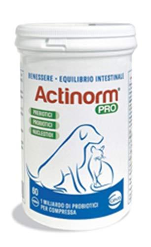 Actinorm Pro - Bioregolatore naturale della funzionalità intestinale per cani e gatti, 60 Compresse