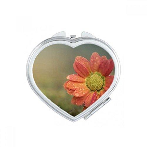 DIYthinker Rose Belle pétales de Fleurs de Coeur Maquillage Compact Miroir de Poche Portable Mignon Petit Miroirs Main Cadeau Multicolor