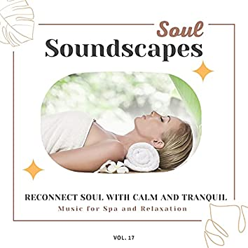 Soul Soundscapes, V17 - Reconnect Soul With Calm And Tranquil Music For Spa And Relaxation