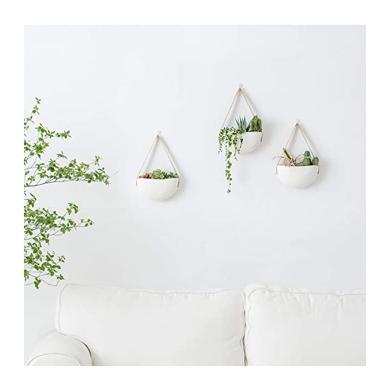 Mkono Ceramic Hanging Planter Wall Planters Set of 3 Modern Flower Plant Pots for Succulent Herb Air Plant Live or Faux… 3 These wall hanging planter can be used to add some vertical greenery to any wall in your home, great to display your lovely plants like cactus, herbs, succulents, air plants or other small plant. Beautifully for storage paint brushes, pens or other small things. Suitable for indoor and outdoor use. Material: white ceramic flower pot, leather strap and brass screws. Wide version of the plant pot will be better to display your plant collection. Wall hanging design is perfect for keeping your lovely plants out of the reach of pets and children! Bring modern design and industrial style to your wall with a leather strap and a solid brass screw. High fired porcelain creates a white smooth matte glaze look, and the interior is finished with glaze. Elevates the room and accentuates the beauty of your houseplants with its simple but sculptural presence.
