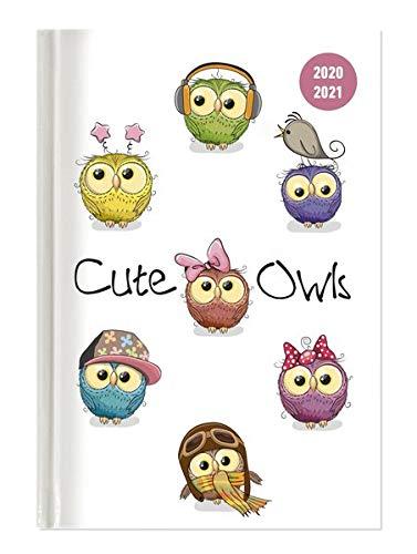 Collegetimer Cute Owls 2020/2021 - Schüler-Kalender A6 (10x15 cm) - Eule - Weekly - 224 Seiten - Terminplaner - Alpha Edition (Collegetimer A6 Weekly)