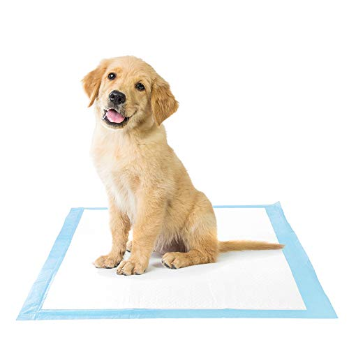 Petsmart Puppy Training Pads