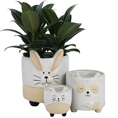 Ceramic Animal Succulent Plant Pots - 5.4 + 4.3 +3.1 Inch Cute Rabbit, Raccoon & Cat Shaped Half Glazed Rough Pottery Indoor Planters for Flower Cactus Air Plants, Home Decor Gift